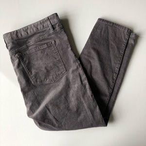 AT Loft Curvy Corduroy Gray Pants SZ 16 *MINT*